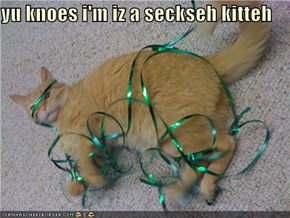 yu knoes i'm iz a seckseh kitteh