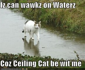 Iz can wawkz on Waterz  Coz Ceiling Cat be wit me