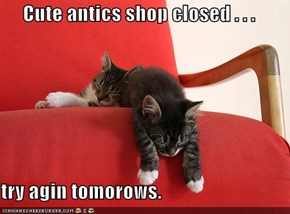 Cute antics shop closed . . .  try agin tomorows.