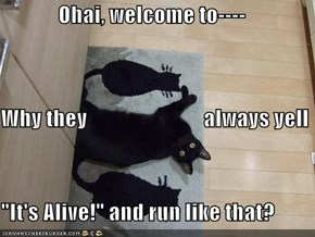 """Ohai, welcome to---- Why they                           always yell  """"It's Alive!"""" and run like that?"""