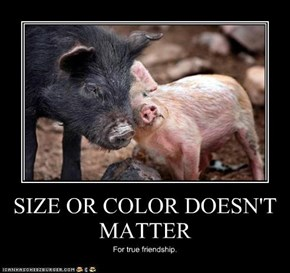 SIZE OR COLOR DOESN'T MATTER