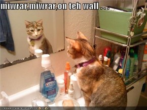 miwrar,miwrar,on teh wall . . .
