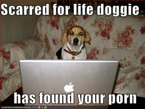 Scarred for life doggie  has found your porn