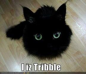 I iz Tribble