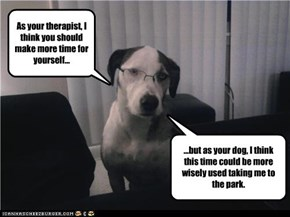 Dog Therapist
