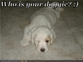 Who is your doggie? ;)