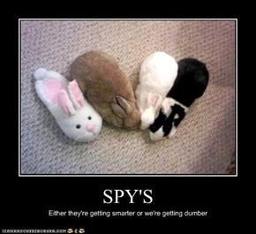 SPY'S