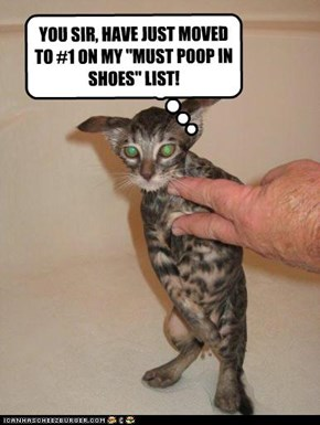 """YOU SIR, HAVE JUST MOVED TO #1 ON MY """"MUST POOP IN SHOES"""" LIST!"""