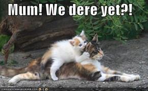 Mum! We dere yet?!
