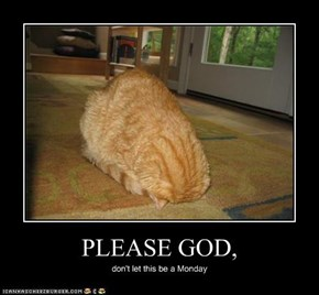 PLEASE GOD,