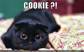 COOKIE ?!
