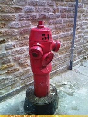 Happy Italian Hydrant