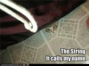 The String It calls my name