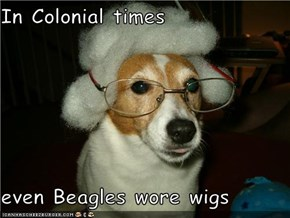 In Colonial times  even Beagles wore wigs