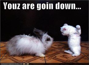 Youz are goin down...