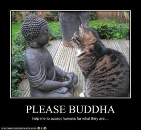 PLEASE BUDDHA