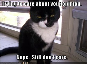 Trying to care about your opinion.  Nope.  Still don't care.