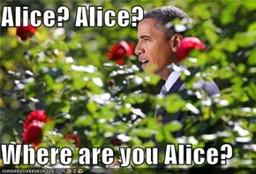 Alice? Alice?  Where are you Alice?