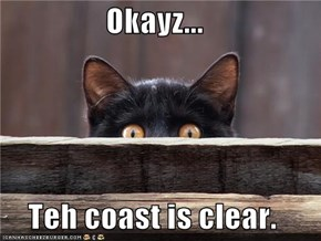 Okayz...  Teh coast is clear.