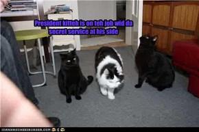president kitteh