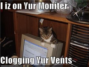 I iz on Yur Moniter  Clogging Yur Vents