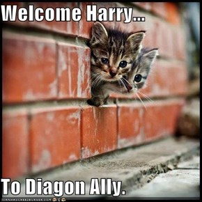 Welcome Harry...  To Diagon Ally.