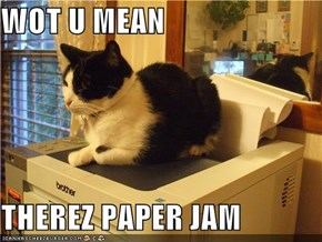 WOT U MEAN  THEREZ PAPER JAM