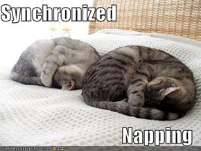 Synchronized  Napping