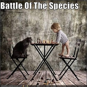 Battle Of The Species
