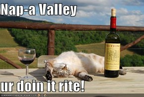 Nap-a Valley  ur doin it rite!