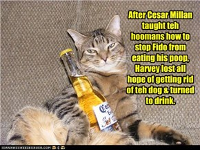 After Cesar Millan taught teh hoomans how to stop Fido from eating his poop, Harvey lost all hope of getting rid of teh dog & turned to drink.