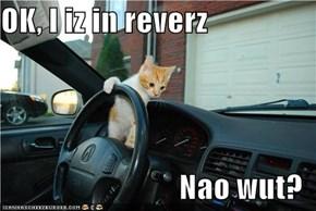 OK, I iz in reverz  Nao wut?