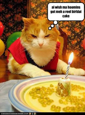 ai wish ma hoomins got meh a reel birfdai cake