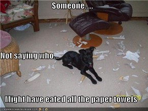 Someone..... Not saying who... Might have eated all the paper towels