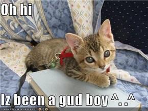 Oh hi   Iz been a gud boy ^. .^