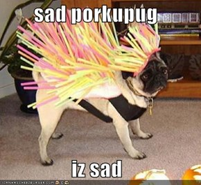 sad porkupug  iz sad