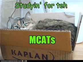 Studyin'