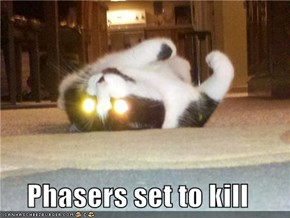 Phasers set to kill