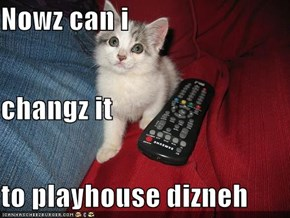 Nowz can i changz it to playhouse dizneh