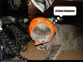 ai hatez halowene