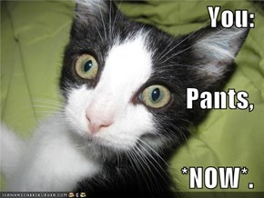 You: Pants, *NOW*.