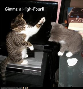 Gimme a High-Four!!