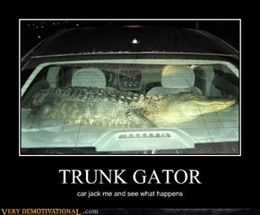 TRUNK GATOR