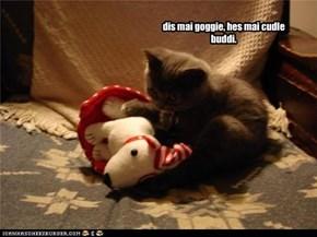 dis mai goggie, hes mai cudle buddi.