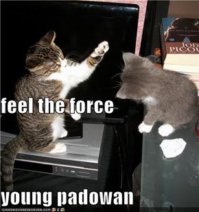 feel the force young padowan