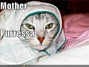 Mother  Purressa