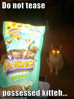 Do not tease   possessed kitteh...