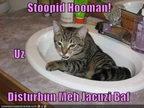 Stoopid Hooman!       Uz  Disturbun Meh Jacuzi Baf