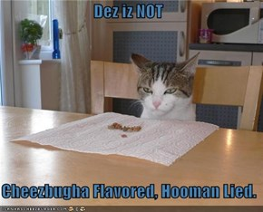 Dez iz NOT     Cheezbugha Flavored, Hooman Lied.