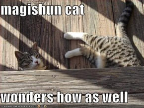magishun cat  wonders how as well